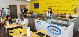 Linnalla ice-cream Café