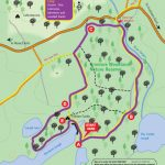 Dromore Wood Loop Map