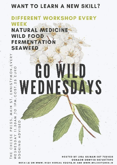 go wild wednesday wild herbs for magic moods lisa guinan irish