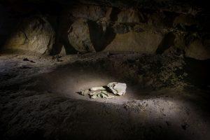Bones in Pit