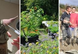 Boghill Centre Eco Experience