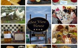 Breakfast Banquet Collage