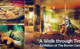 Burren Centre Exhibition