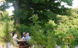 Burren fine wine+food 20th June