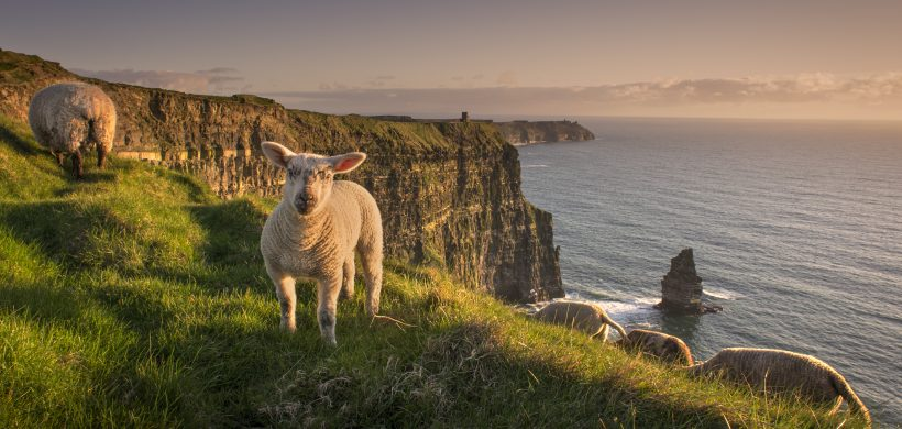 cliffs of moher visitor experience visit the burren