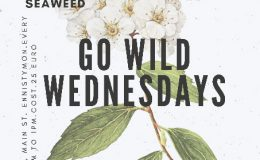 Go Wild Wednesdays
