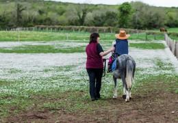 Pony ride at The Farmyard