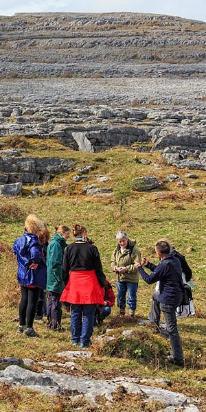 Burren Guided Walk